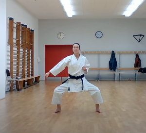 Karate Trainingsvideo